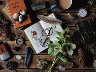 Собирать пазл Натюрморт натуралиста онлайн