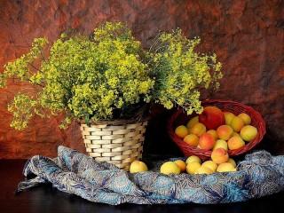 Собирать пазл Натюрморт с абрикосами онлайн