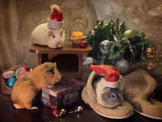 Собирать пазл Новогоднее онлайн