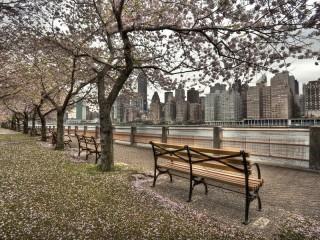 Собирать пазл Нью-Йорк - набережная онлайн