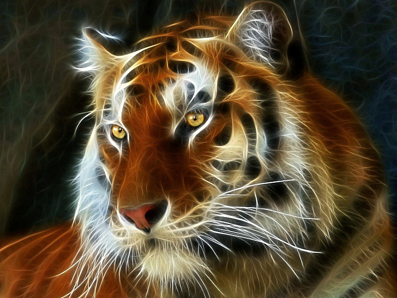 Пазл Собирать пазлы онлайн - Огненный тигр