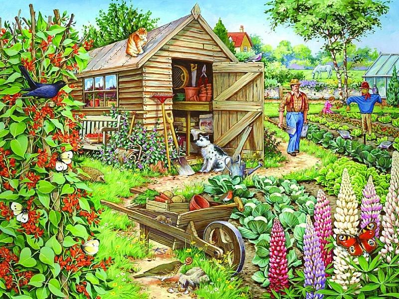 рисунок огорода картинки европейских