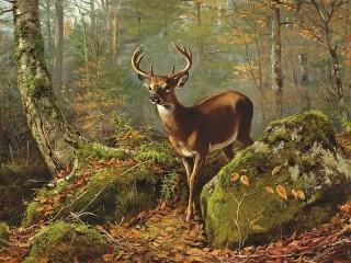 Собирать пазл Олень в лесу онлайн