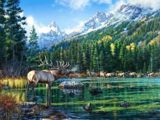 Собирать пазл Оленье озеро онлайн