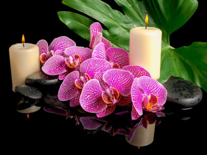 Пазл Собирать пазлы онлайн - Орхидеи и свечи
