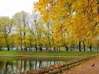 Собирать пазл Осень Питер онлайн
