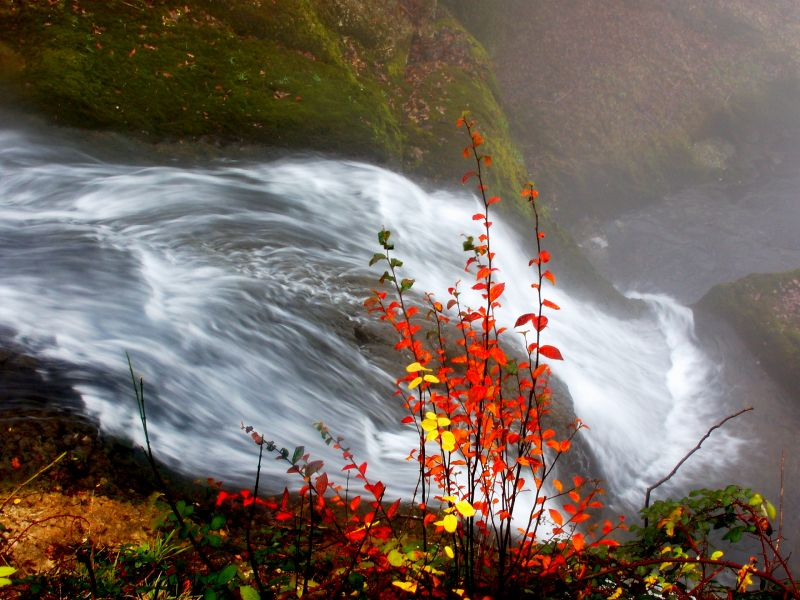 Пазл Собирать пазлы онлайн - Осень у водопада