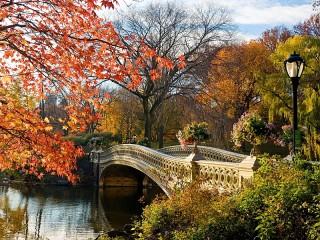 Собирать пазл Осень в Нью-Йорке онлайн