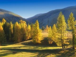 Собирать пазл Осень в Язуле онлайн
