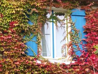 Собирать пазл Осеннее окошко онлайн