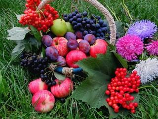 Собирать пазл Осеннее угощение онлайн