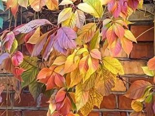 Собирать пазл Осенние листья онлайн