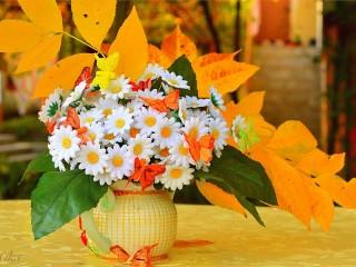 Собирать пазл Осенние ромашки онлайн
