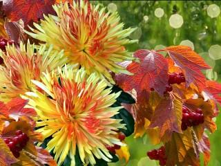 Собирать пазл Осенний букет онлайн