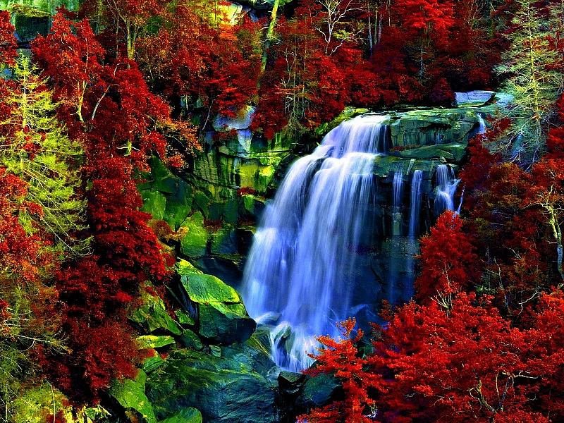 Пазл Собирать пазлы онлайн - Осенний водопад