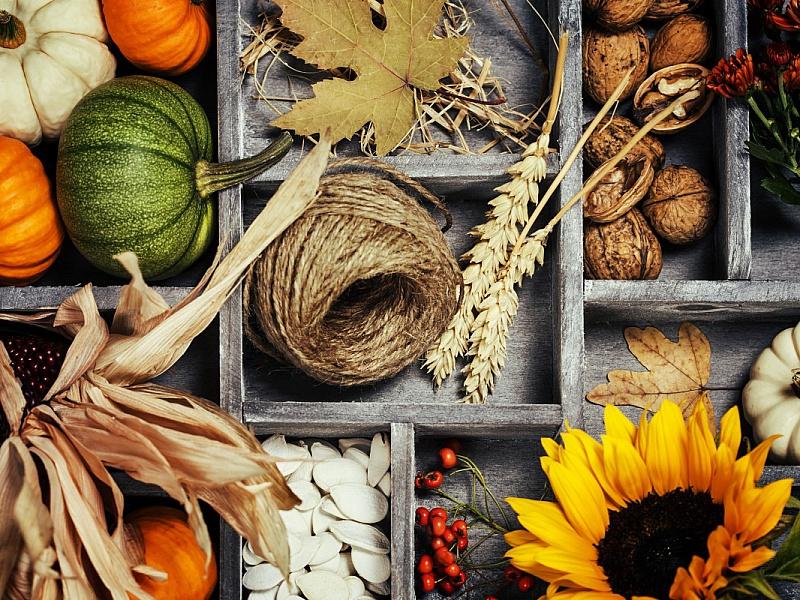 Пазл Собирать пазлы онлайн - Осенняя композиция