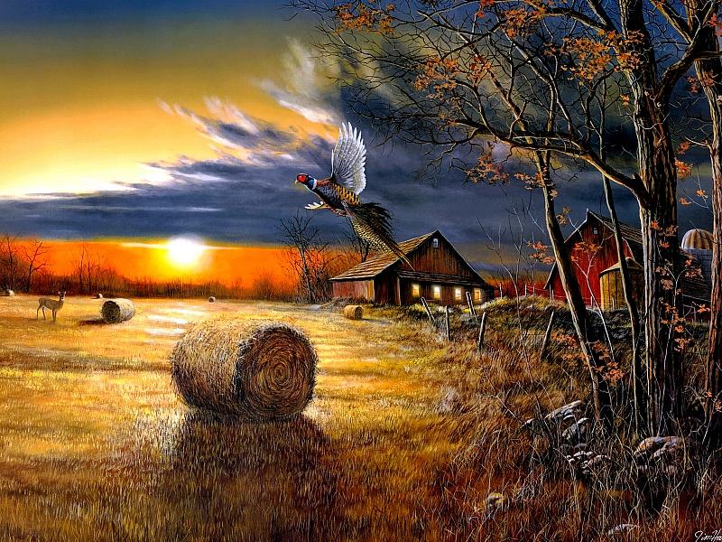 Открытки вечерняя осень, днем рождения кума