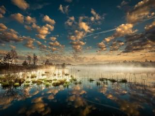 Собирать пазл Отражение и туман онлайн