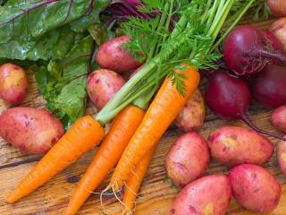 Собирать пазл Овощи корнеплоды онлайн