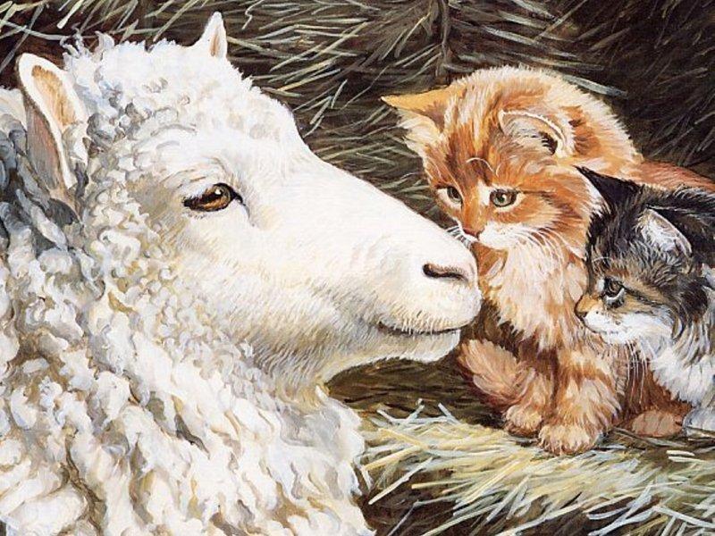 Пазл Собирать пазлы онлайн - Овца пришла