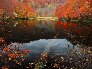 Собирать пазл Озеро Цута Нума онлайн