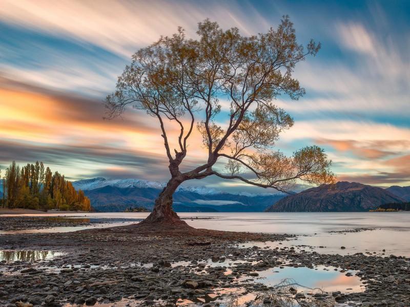 Пазл Собирать пазлы онлайн - Озеро Ванака