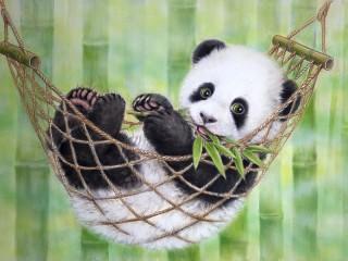 Собирать пазл Панда в гамаке онлайн