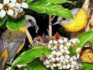 Собирать пазл Пара птиц онлайн