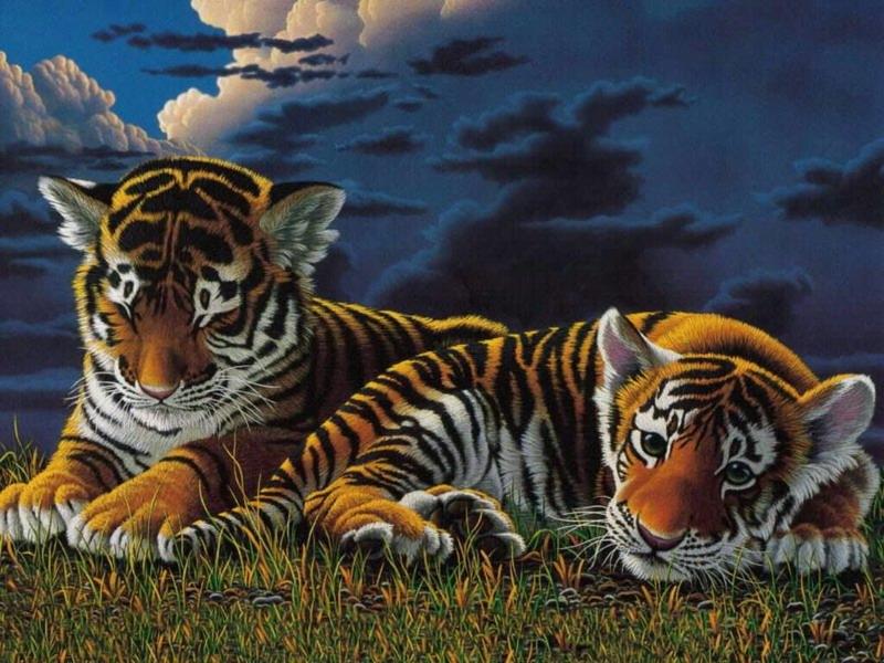 Пазл Собирать пазлы онлайн - Пара тигрят