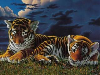 Собирать пазл Пара тигрят онлайн