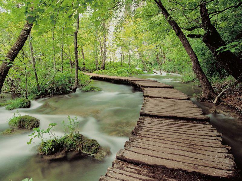 Пазл Собирать пазлы онлайн - Парк в Хорватии