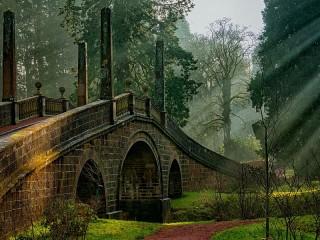 Собирать пазл Парк в Шотландии онлайн