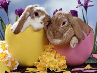 Собирать пазл Пасхальные кролики онлайн