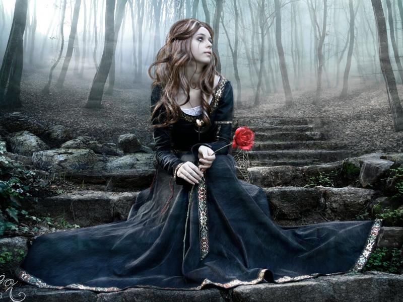 Пазл Собирать пазлы онлайн - Печальная роза