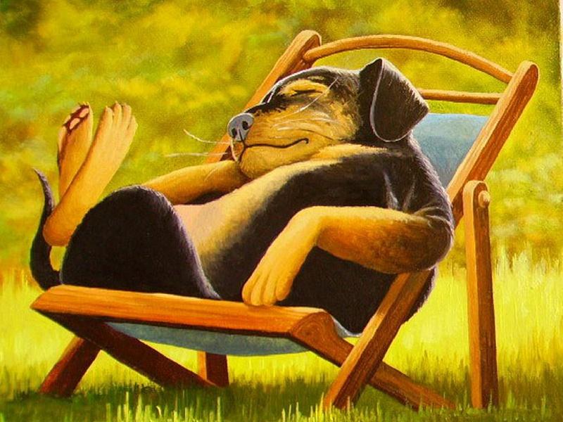 Пазл Собирать пазлы онлайн - Пес на отдыхе