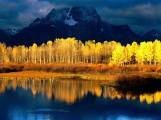 Собирать пазл Сине-жёлтый пейзаж  онлайн
