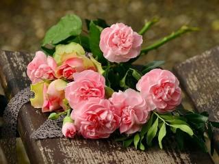 Собирать пазл Пионы и розы онлайн