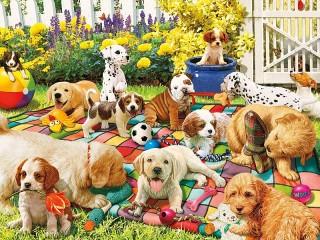 Собирать пазл Площадка для щенков онлайн