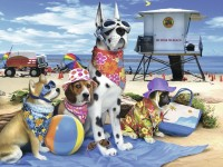 Собирать пазл Пляжный сезон онлайн