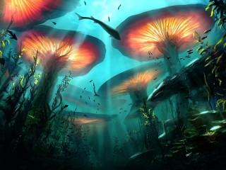 Собирать пазл Подводные грибы онлайн