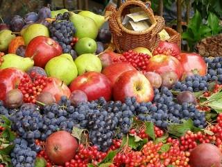 Собирать пазл Покупайте витамины онлайн