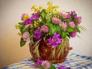 Собирать пазл Полевые цветы21 онлайн