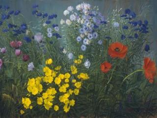 Собирать пазл Полевые цветы  онлайн