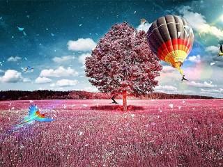 Собирать пазл Полёт фантазии онлайн