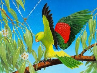 Собирать пазл Попугай на ветке онлайн