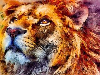Собирать пазл Портрет льва онлайн
