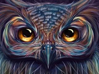 Собирать пазл Портрет совы онлайн
