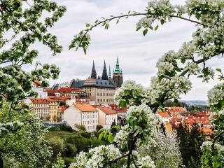 Собирать пазл Прага онлайн
