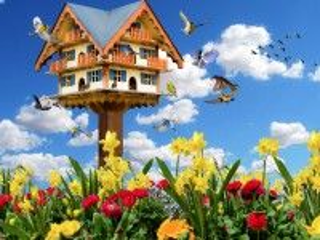 Собирать пазл Птичий дом онлайн