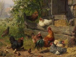 Собирать пазл Птичий двор онлайн